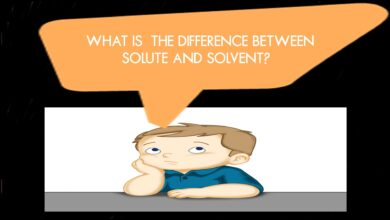 What Is the Difference Between Solute And Solvent?